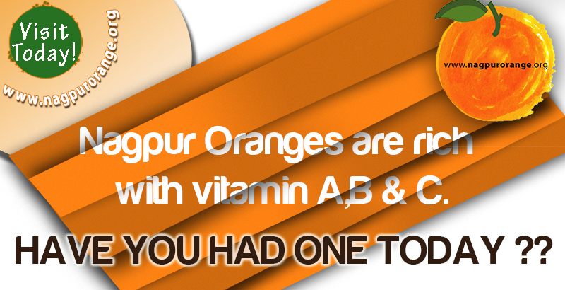 Order Nagpur Oranges Online